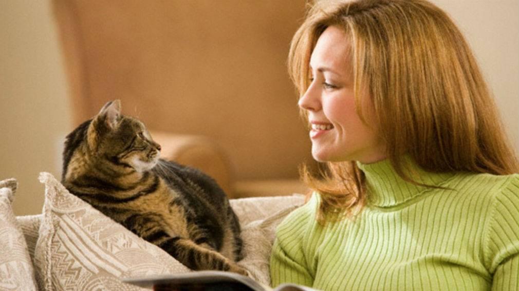 Как называется чрезмерная любовь к кошкам | патологическая, сильная