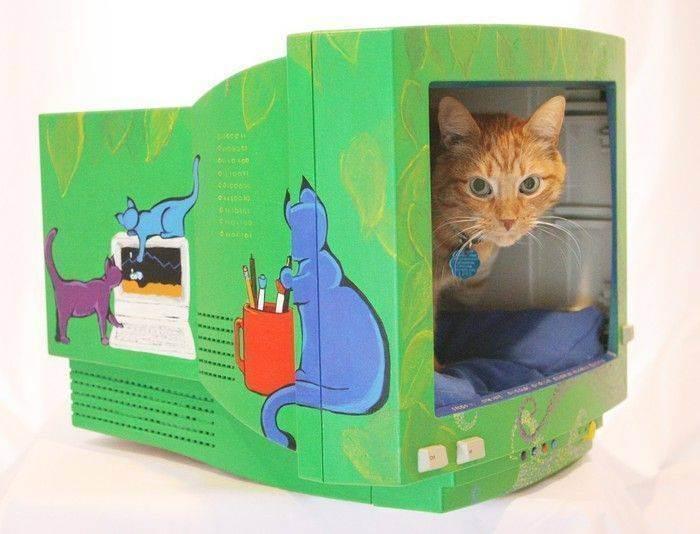 Лайфхаки для кошек