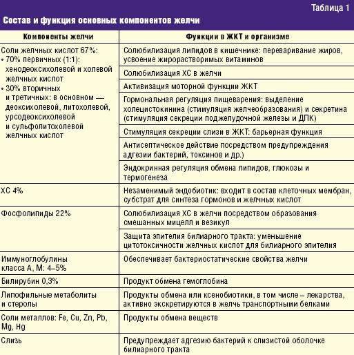 Лимфома кишечника у кота: симптомы, лечение и прогноз выживаемости