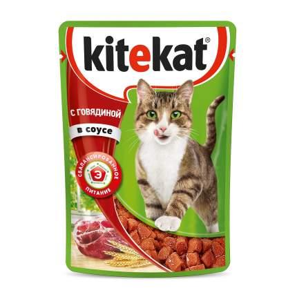 Из чего делают кошачий корм? обзор кормов для кошек и сравнение по составу