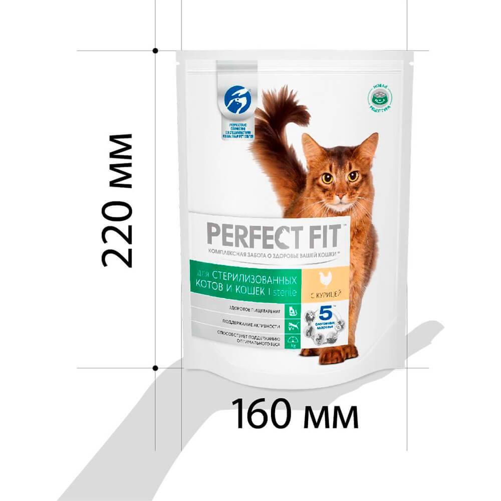 Чем кормить кастрированного кота: грамотные советы чем кормить кастрированного кота: грамотные советы