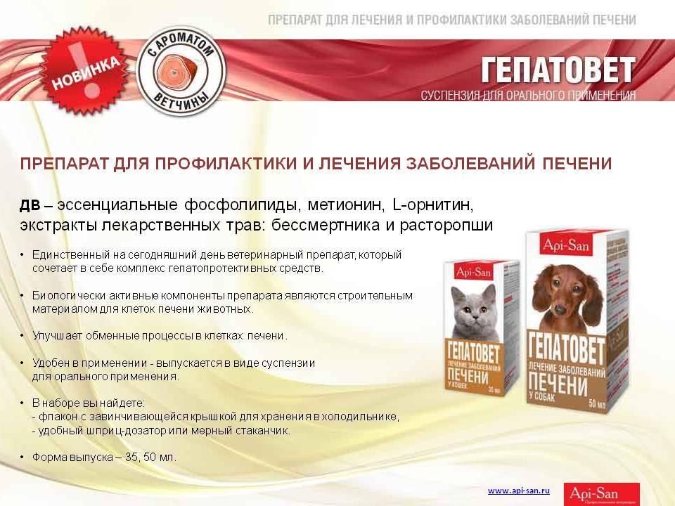 Гепатовет для кошек: инструкция по применению и дозировка, побочные эффекты, аналоги