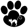 Вреден ли вискас для кошек и котят
