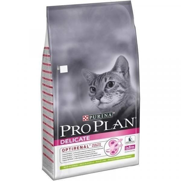 Лечебные корма для кошек: виды, как давать, производители
