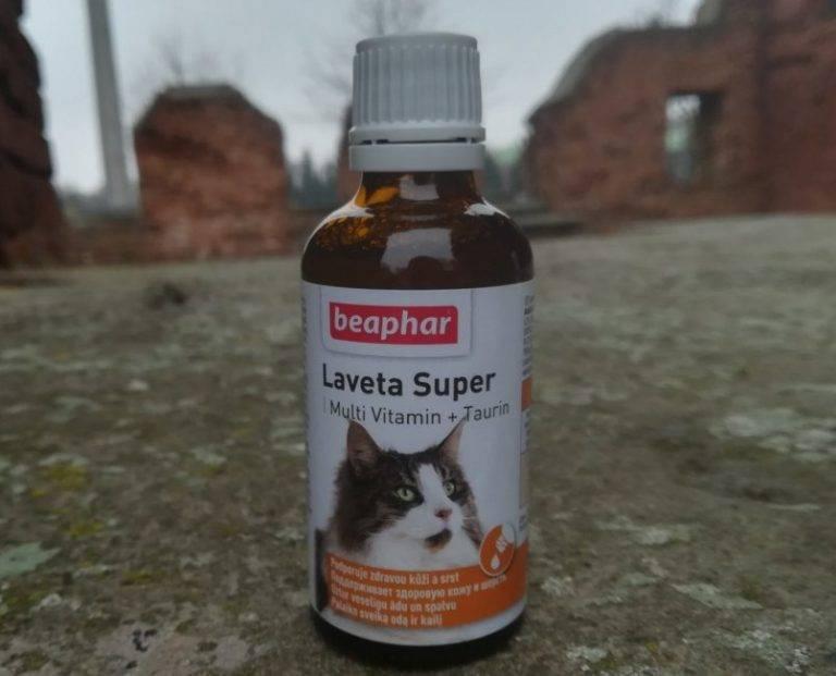 Таурин для кошек - в корме, что это, вред и польза, для чего нужен, где содержится