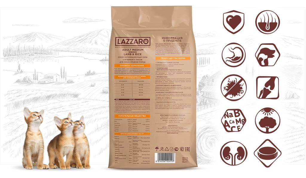 Рейтинг топ 10 лучшие корма для кошек: какой выбрать и купить, отзывы, цена, характеристики, достоинства и недостатки