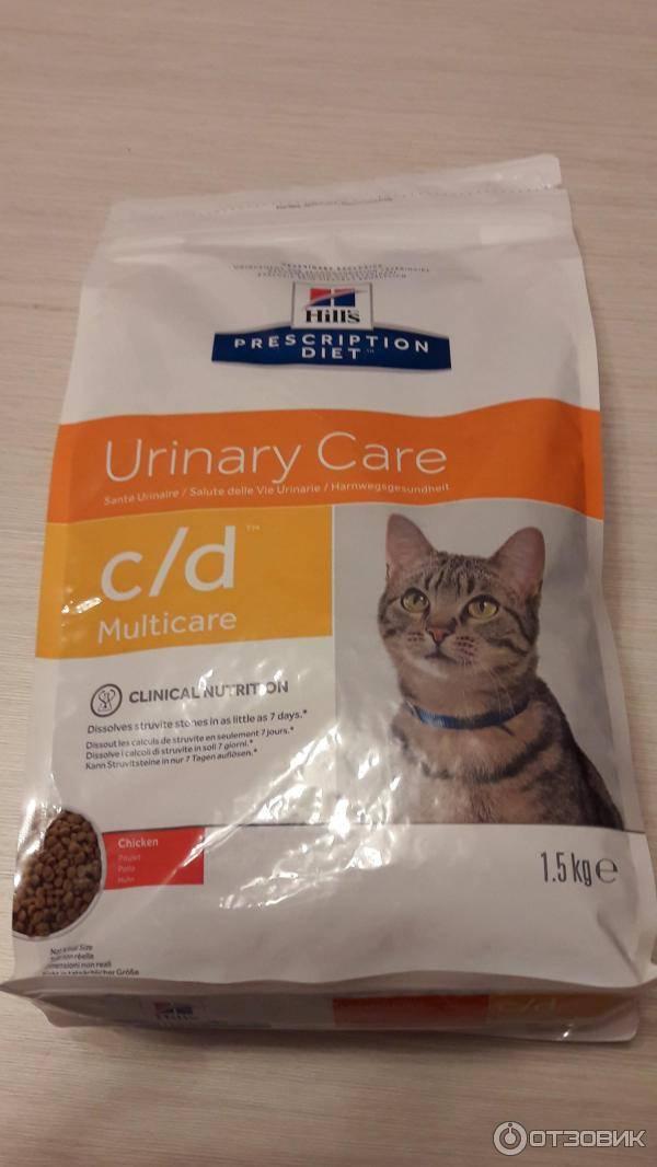 Чем кормить кота при мочекаменной болезни чем кормить кота при мочекаменной болезни