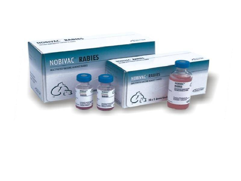 Нобивак трикет трио для кошек: описание препарата, инструкция по применению вакцины, побочные эффекты