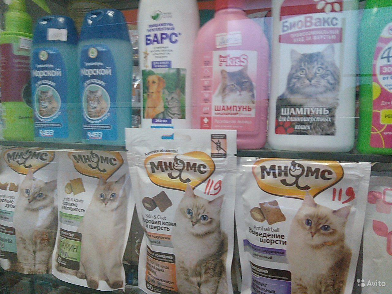 Шампунь от блох для домашних животных: какой выбрать и как применять