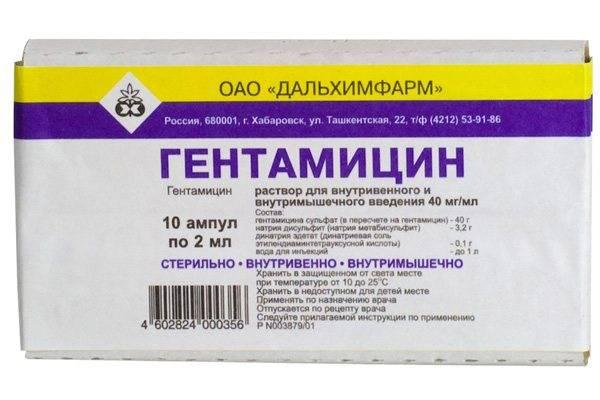 Антибиотики для кошек: виды, применение, дозировка