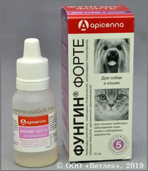 Мазь ям бк для кошек от лишая и других кожных заболеваний: инструкция по применению, отзывы, аналоги препарата