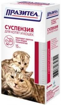 Глистогонное для кошек — распишем во всех подробностях