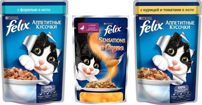 Вреден ли сухой корм для кошек, вред и польза готовых кормов по мнению ветеринаров, рекомендации по кормлению