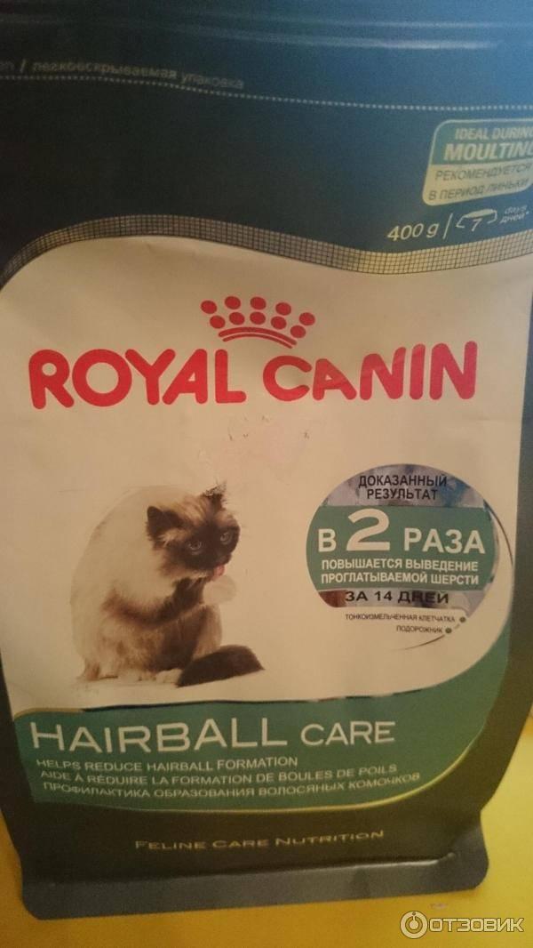 Корм для кошек при запорах