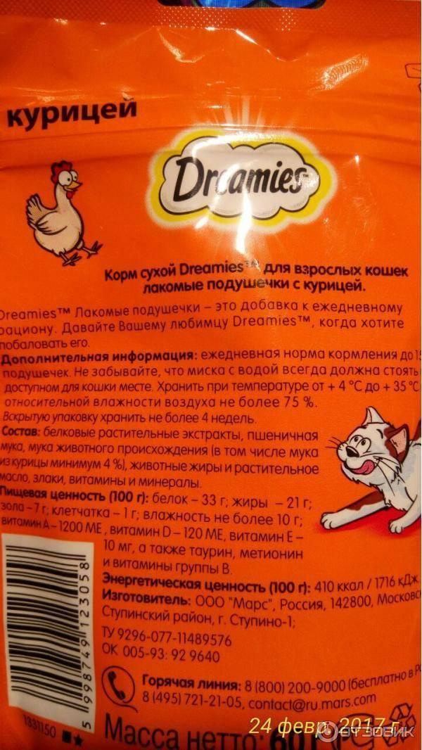 Как заставить кошку похудеть? лишний вес у кошки, режим похудения, готовые корма для похудения для кошек