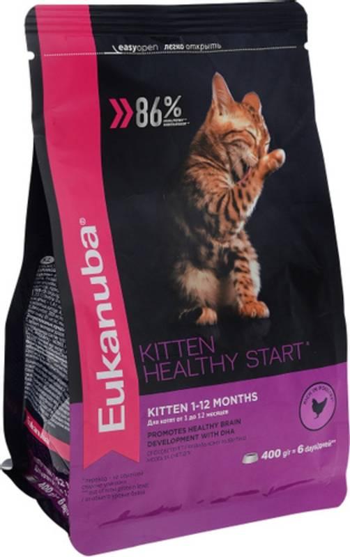 Eukanuba – корм для кошек: чтобы ваш питомец был здоровым