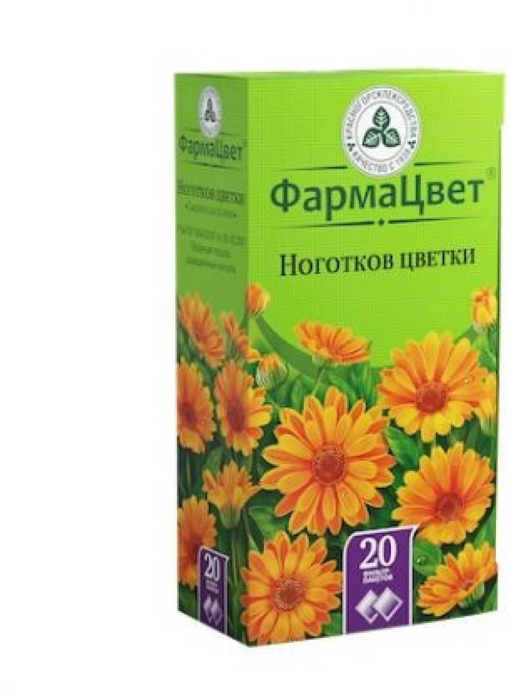 Календула: лечебные свойства и противопоказания, мазь, отвар, чай, настойка