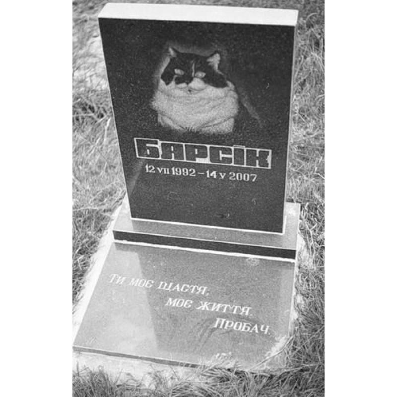Где и как правильно похоронить кошку