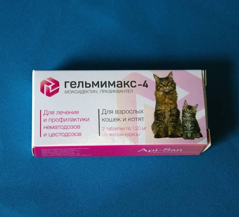 Цестал для кошек: описание препарата, состав, форма выпуска, назначение, дозировка, противопоказания, аналоги