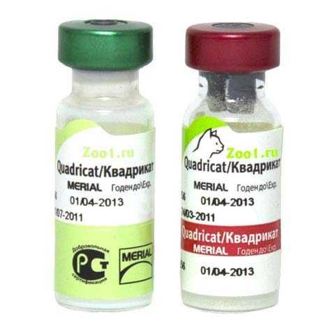 Противовирусная вакцина нобивак трикет трио для кошек