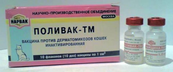 Вакцина «поливак тм» для кошек и собак: инструкция по применению