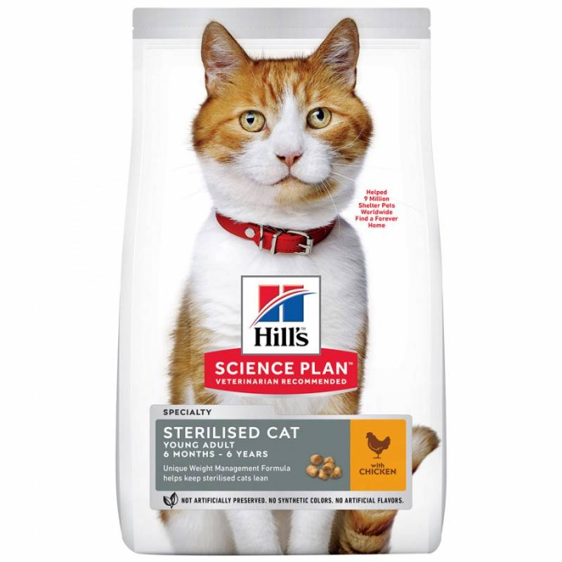 Как выбрать корм для кастрированного кота – рейтинг 2019 года