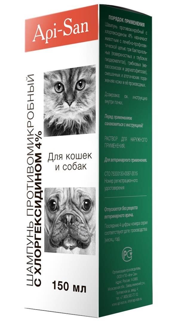 Хлоргексидин для кошек | инструкция по применению хлоргексидина у кошек