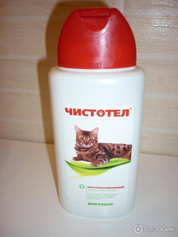 Шампунь чистотел для кошек – состав и особенности применения