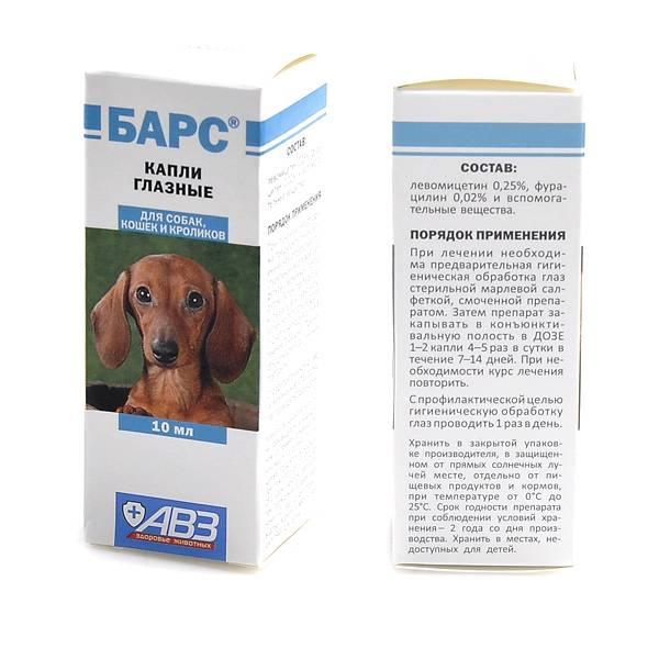 Ирис (капли) для собак и кошек | отзывы о применении препаратов для животных от ветеринаров и заводчиков