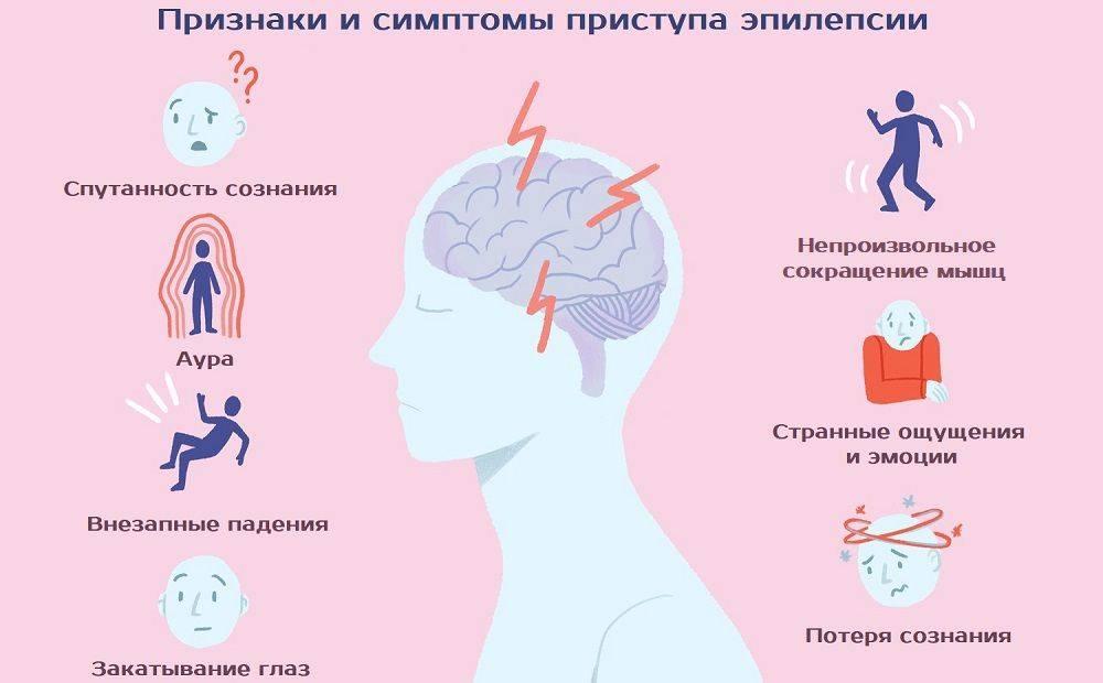 Симптомы и лечение эпилепсии у кошек