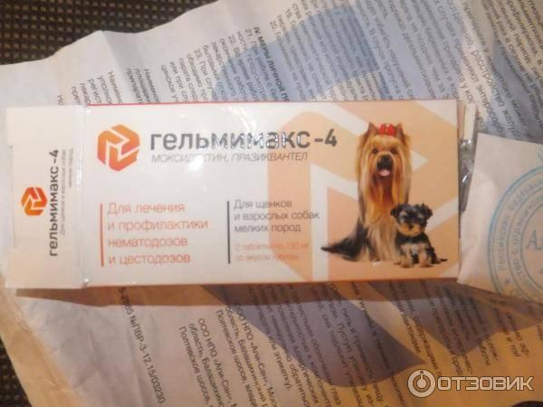 Гельмимакс для собак: показания и инструкция по применению, отзывы, цена