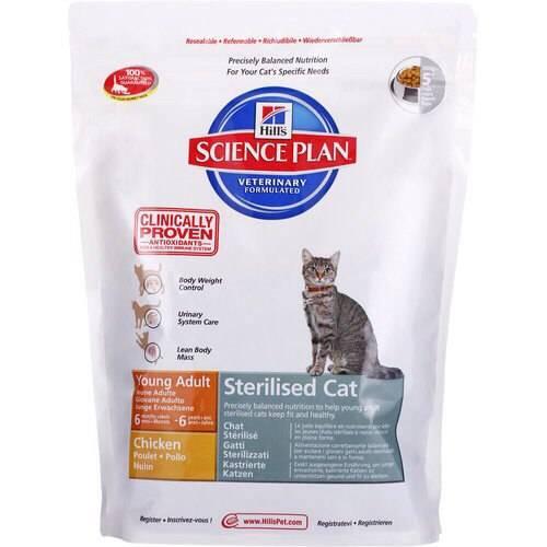 Рейтинг кормов для кастрированных котов и стерилизованных кошек: какие сухие продукты считаются лучшими в своем классе?