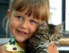 12 доказательств, что кошки полезны для здоровья