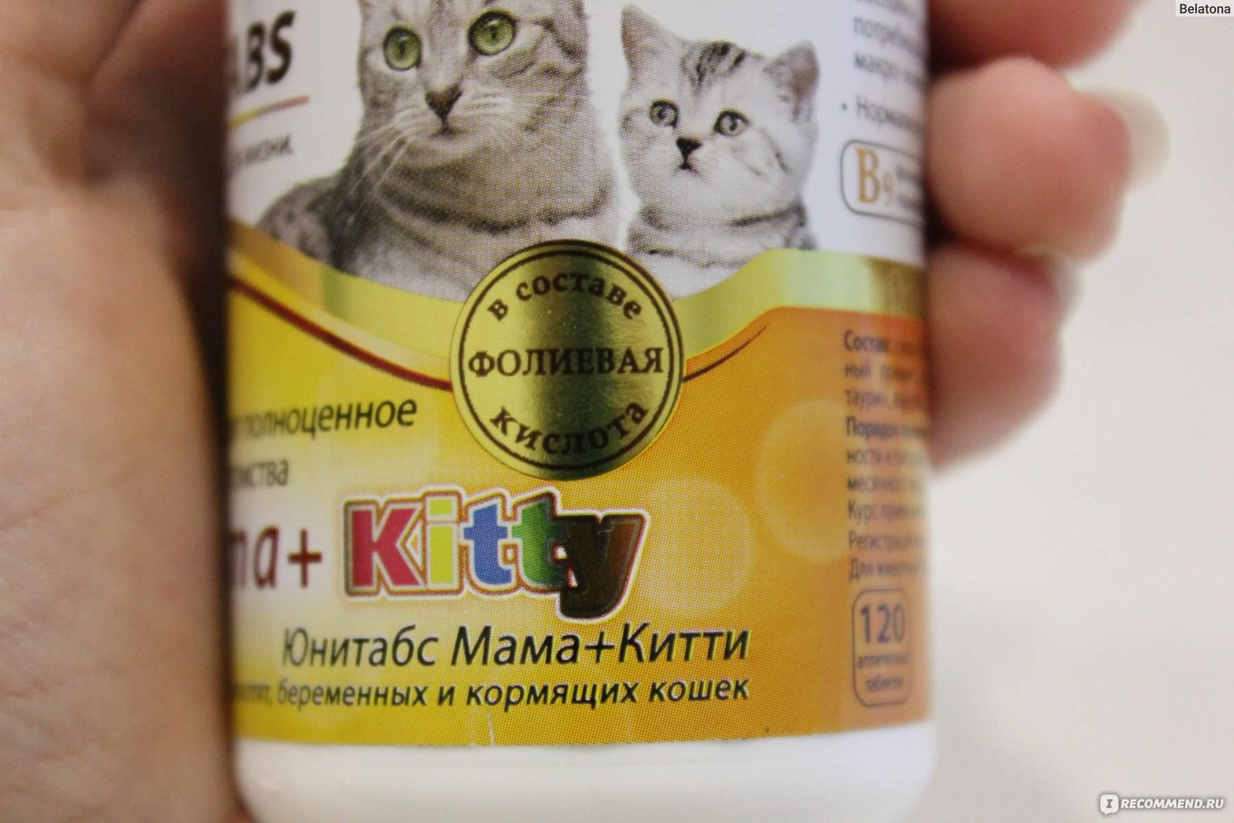Какие витамины комплексы необходимы котам и беременным кошкам: полезные рекомендации ветеринаров и советы
