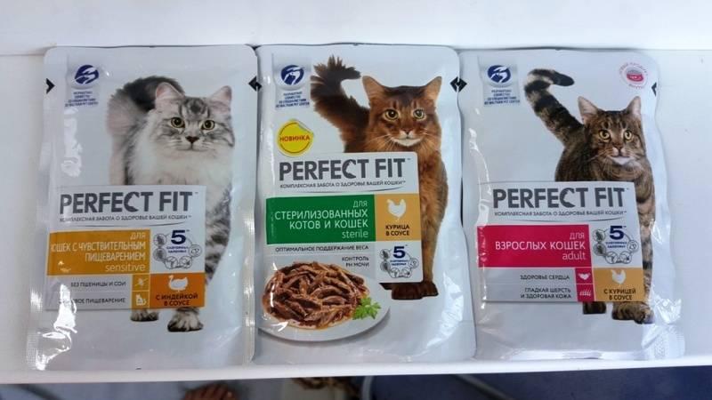 Корм пурина ван (purina one) для кошек | состав, цена, отзывы