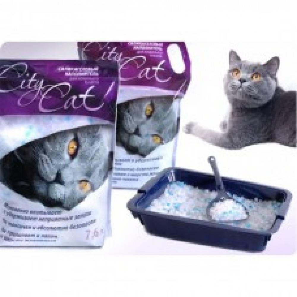 Древесный наполнитель для кошачьего туалета: как выбрать лучший