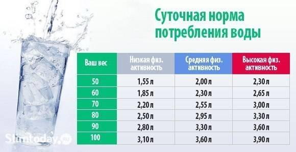 Сколько коты или кошки должны пить воды в день - oozoo.ru
