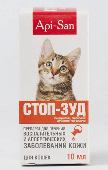 Лечим аллергию у кошек в домашних условиях навсегда: симптомы и препараты, аллергия на корм