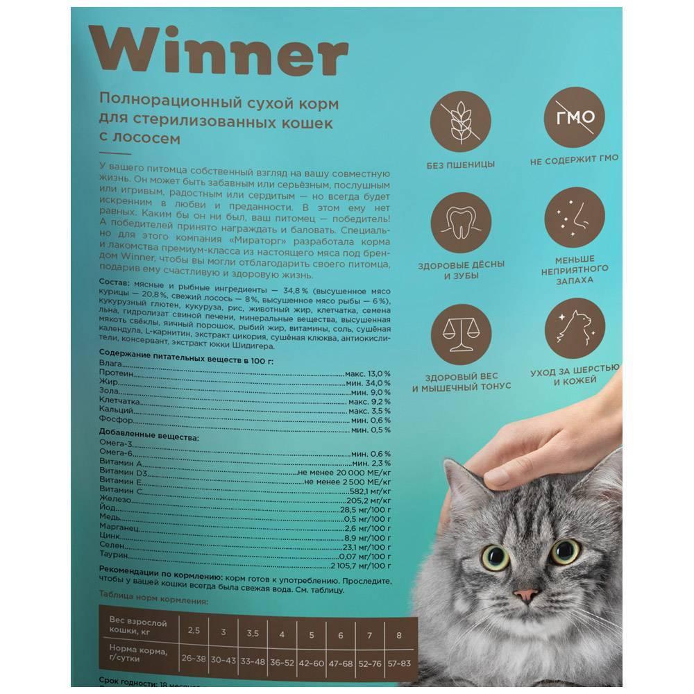 10 лучших кормов для стерилизованных кошек и заботливых хозяев