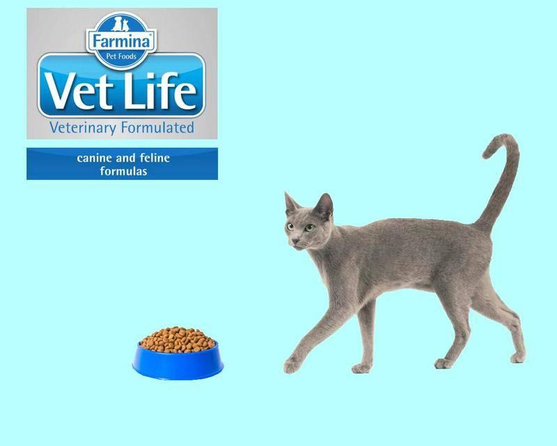 Farmina nd — корм для кошек и котов