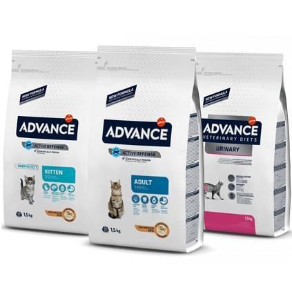 Advance для кошек — ассортимент, отзывы ветеринара