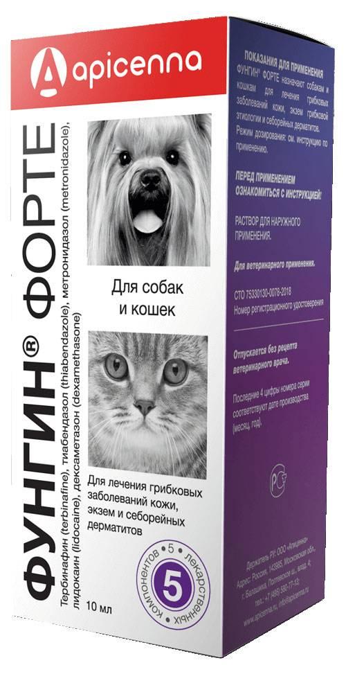 Фунгин форте для кошек и собак: инструкция и применение