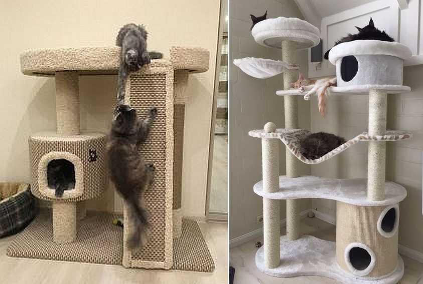 ♥ мебель для котов - дизайн дома вместе с кошкой - 73 фото ♥