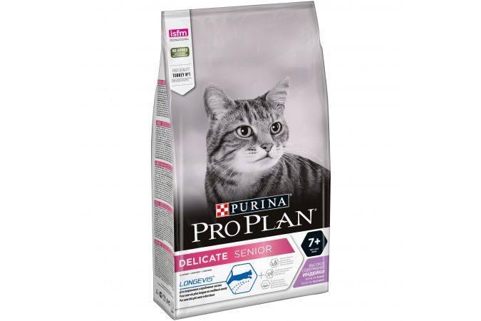 Лечебный корм для кошек – какой выбрать? 4 вида диетического питания для домашних любимцев
