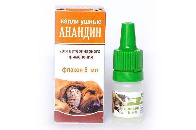 Максидин для собак: инструкция по применению капель в нос, глаза и раствора для уколов. цена, состав, отзывы ветеринара и владельцев