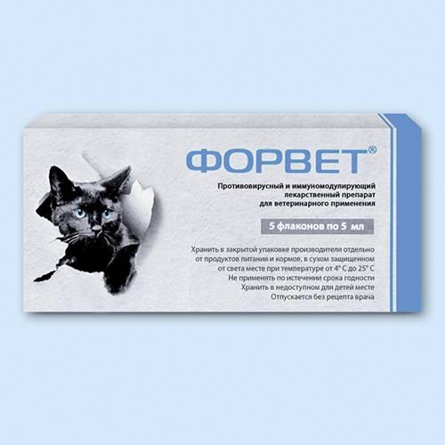 Форвет для кошек: состав, инструкция по применению, отзывы