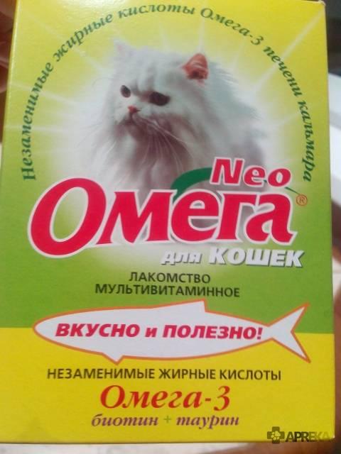 Чем кормить мейн-куна: правильный рацион и режим питания - mimer.ru