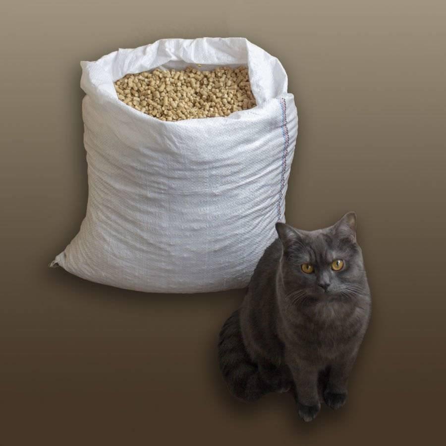 Лучшие наполнители для кошачьего туалета