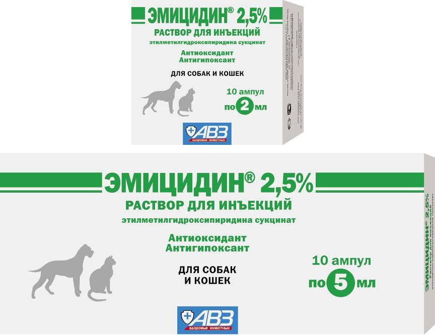 Эмицидин для кошек: инструкция по применению, показания и противопоказания, аналоги, отзывы