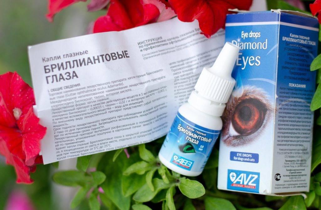 Бриллиантовые глаза (капли глазные) для кошек и собак | отзывы о применении препаратов для животных от ветеринаров и заводчиков